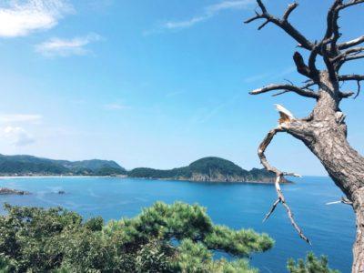 城崎温泉から竹野までのルート